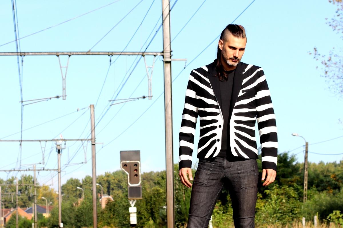 high_zebra